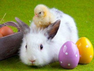 Húsvéti ajándék ötletek