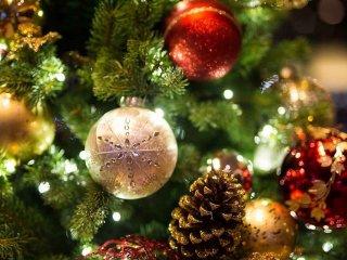 Karácsonyi Djeco Újdonságok