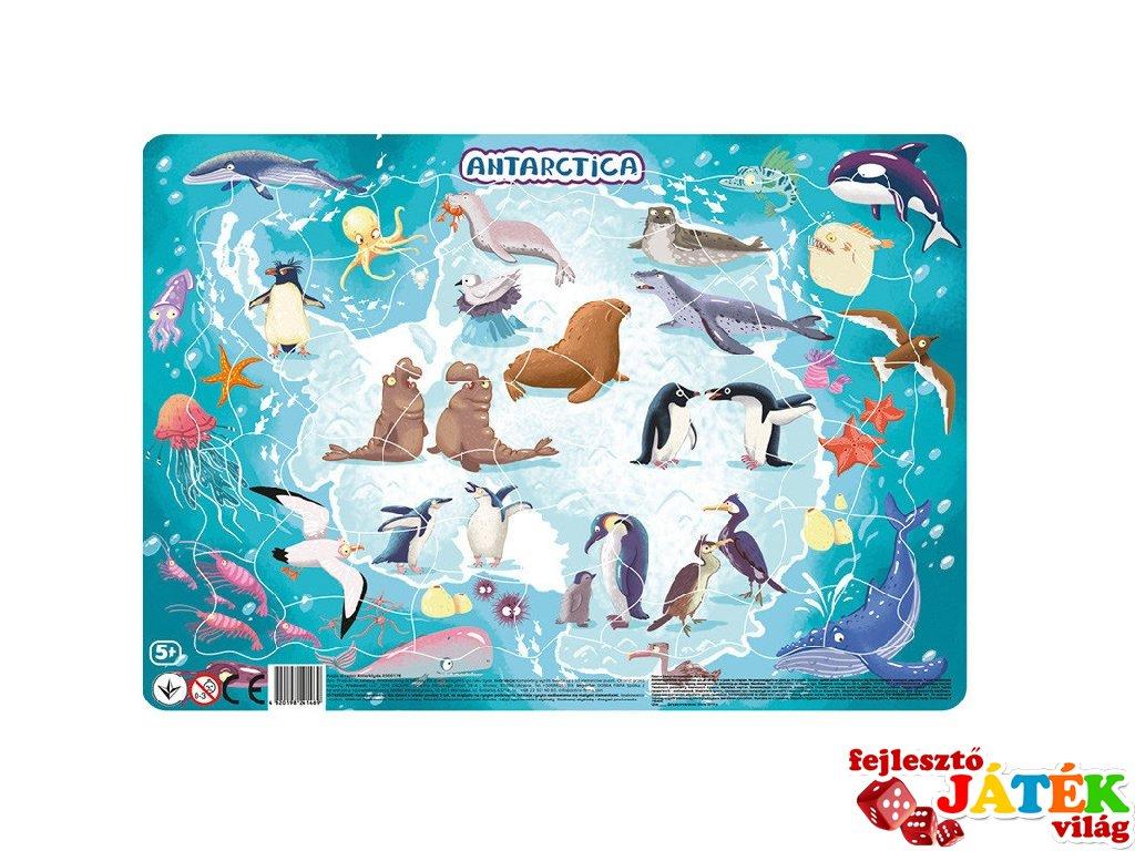 Keretes puzzle Antarktisz, 53 db-os kirakó (DO, 5-8 év)