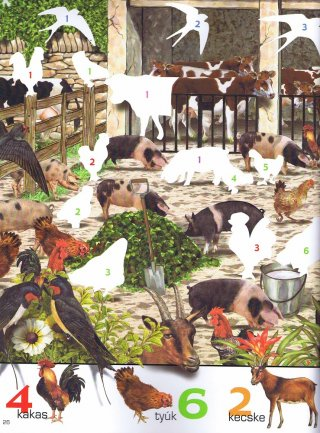 1000 állat matricája Fehér, matricás foglalkoztató füzet (NAP, 5-10 év)