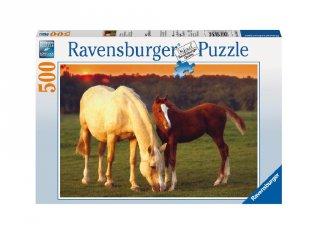 500 db-os puzzle, Gyönyörű lovak (lovas kirakójáték, 8-99 év)