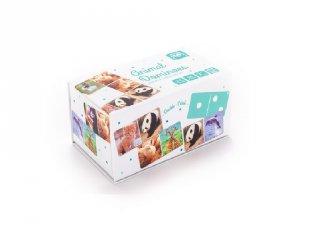 Állatos dominó, logikai játék (2-6 év)