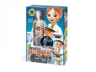 Az emberi test, Buki tudományos készlet (8-14 év)