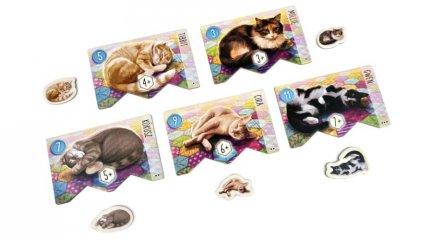 Calico - Foltok, cicák, takarók, családi társasjáték (13-99 év)