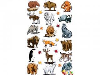 Cooky 3D matrica, Északi állatok (Avenue Mandarine, kb. 20 db-os kreatív játék, 3-12 év)