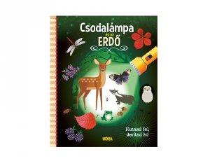 Csodalámpa és az erdő, Kutasd fel, derítsd ki, könyv óvodásoknak (MO, 3-6 év))