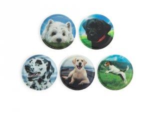 Ergobag Matrica készlet, Kutyák (Erogbag, 5 db-os készlet, 3-12 év)