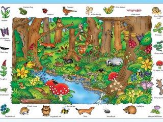 Fedezd fel az erdőt! puzzle (Orchard, where in the wood?, 150 részes puzzle, 5-9 év)