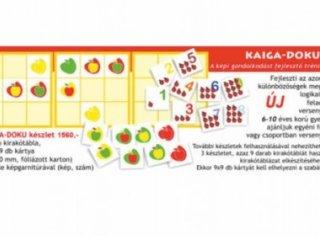 Kaiga-doku, képi gondolkodás (Vésike, logikai fejlesztő játék, 6-9 év)