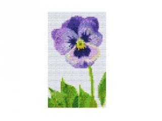 Pixelhobby képkészlet, árvácska (802052, 2db alaplap + színek, 7-99 év)