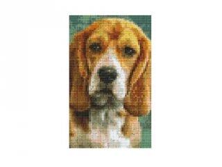 Pixelhobby képkészlet, beagle kutya (802092, 2db alaplap + színek, 7-99 év)