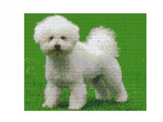 Pixelhobby képkészlet, bichon-frise (804203, 3db alaplap + színek, 7-99 év)