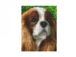 Pixelhobby képkészlet, Cavalier King Charles kutya (801319, 1db alaplap + színek, 7-99 év)
