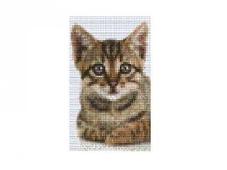Pixelhobby képkészlet, cica (802104, 2db alaplap + színek, 7-99 év)