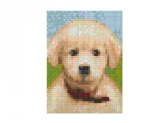 Pixelhobby képkészlet, kiskutya (801322, 1db alaplap + színek, 7-99 év)