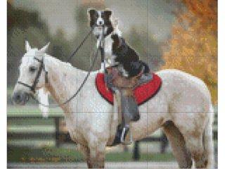 Pixelhobby képkészlet, ló kutyával (9db alaplap + színek díszdobozban, 7-99 év)