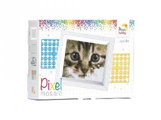 Pixelhobby képkészlet, macska (31179, 10x12 cm-es alaplap, színek, képkeret, 7-99 év)