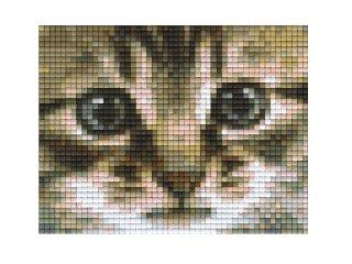 Pixelhobby képkészlet, macska (801179, 1db alaplap + színek, 7-99 év)