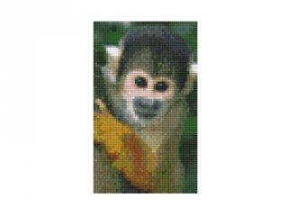 Pixelhobby képkészlet, majom (802097, 2db alaplap + színek, 7-99 év)