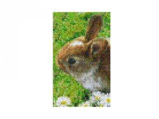Pixelhobby képkészlet, nyuszi (802098, 2db alaplap + színek, 7-99 év)