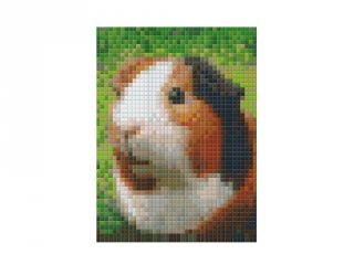 Pixelhobby képkészlet, tengerimalac (801325, 1db alaplap + színek, 7-99 év)