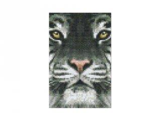 Pixelhobby képkészlet, tigris (802107, 2db alaplap + színek, 7-99 év)