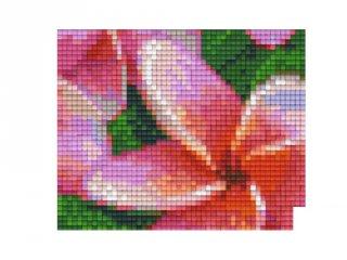 Pixelhobby képkészlet, virágok (801335, 1db alaplap + színek, 7-99 év)
