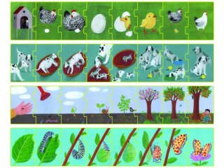 Sorozat puzzle Fejlődés, 4x8 db-os kirakó (CLEM, 3-6 év)