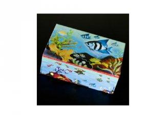 Zenélő doboz, Csikóhal
