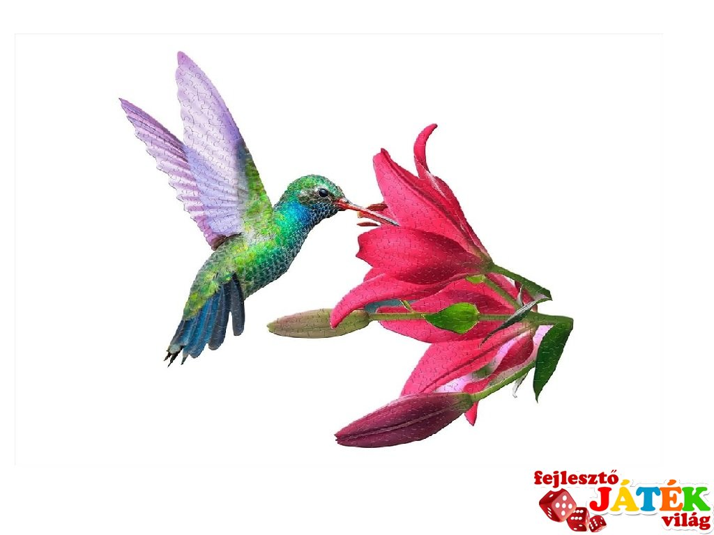 Wow Puzzle Kolibri, 300 db-os formakirakó